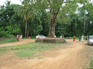 Infront of the Temple