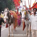 Vidhyapeeta_Krishnashtami (10)