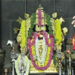 Vidhyapeeta_Krishnashtami (39)