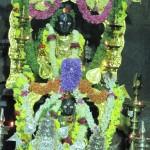 Vidhyapeeta_Krishnashtami (43)