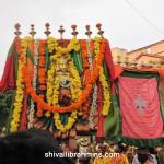 Vidhyapeeta_Krishnashtami (7)