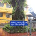 Ashwatha Katte