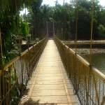 Hanging Bridge near Temple