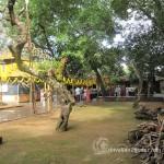 Southadka Shri Mahaganapathi Temple (2)