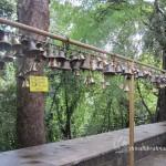 Southadka Shri Mahaganapathi Temple (34)