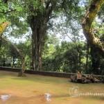 Southadka Shri Mahaganapathi Temple (5)